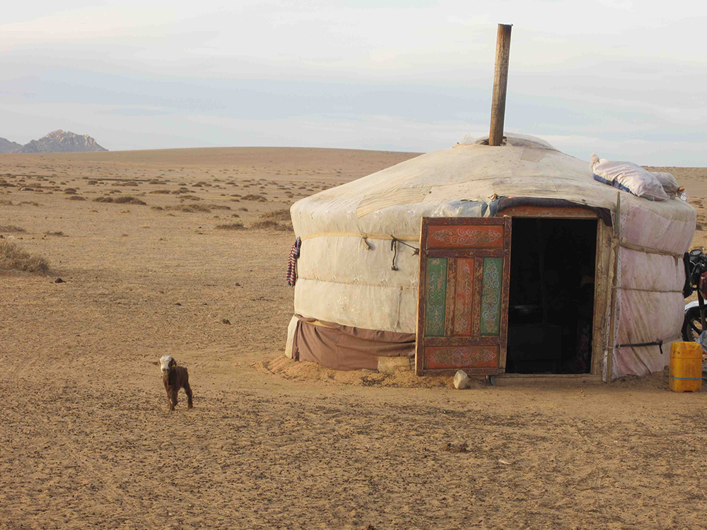 My accomodation on the road, a Mongolian ger. *Not all gers come with adorable baby lambs.