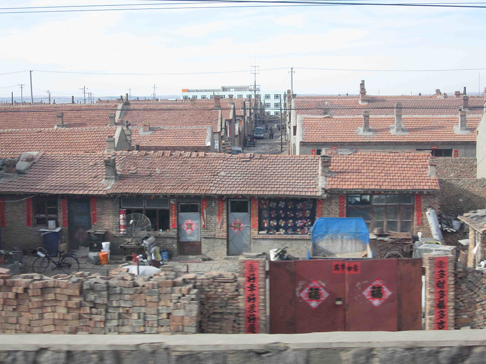 Watching the factory farm houses go by from the train.